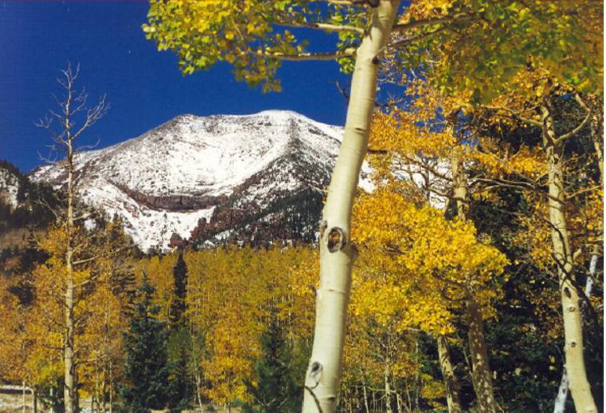 Humphrey's Peak from the Kachina Peaks Wilderness