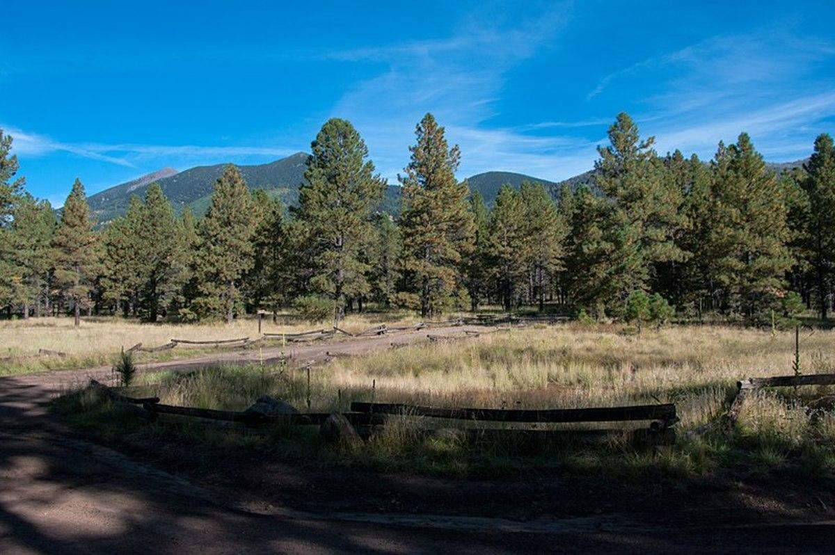 Hiking the Sunset Trail in Flagstaff, Arizona