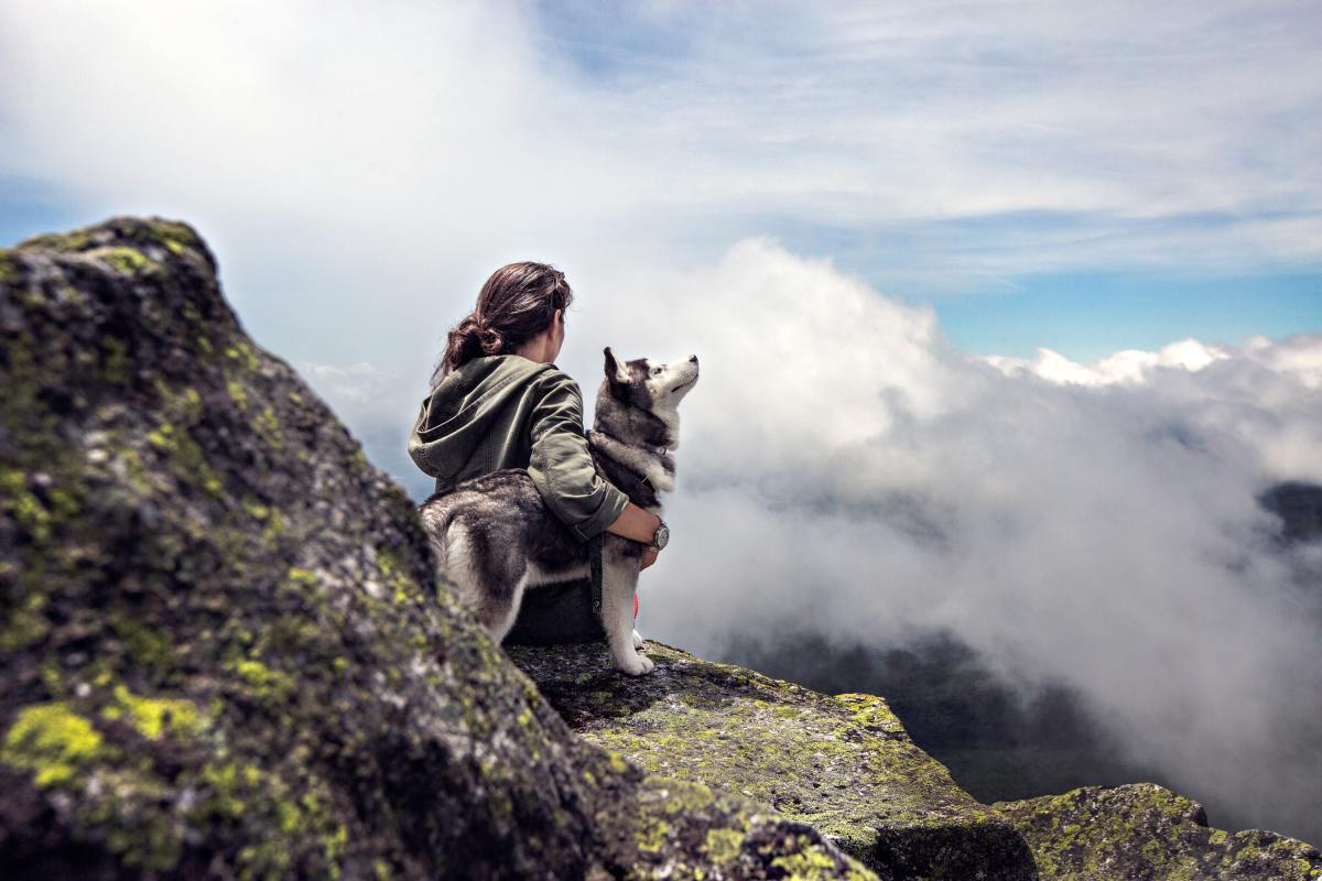 Tips for Hiking With Dogs
