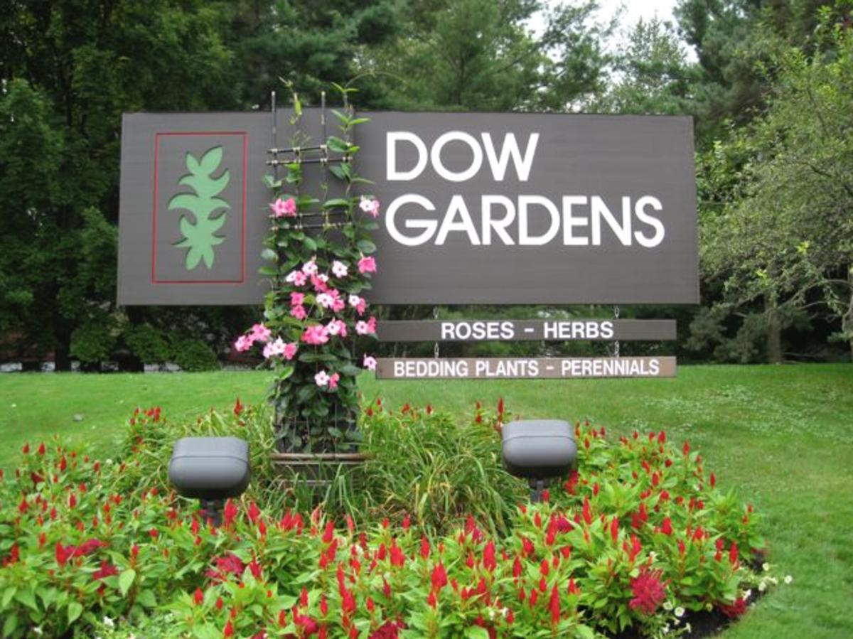 Butterfly Exhibit: Dow Gardens in Midland Michigan