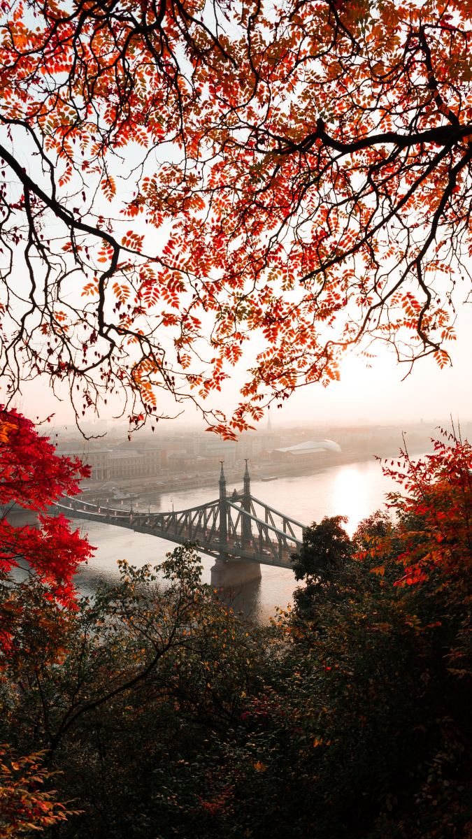 Fall in (love with) Budapest