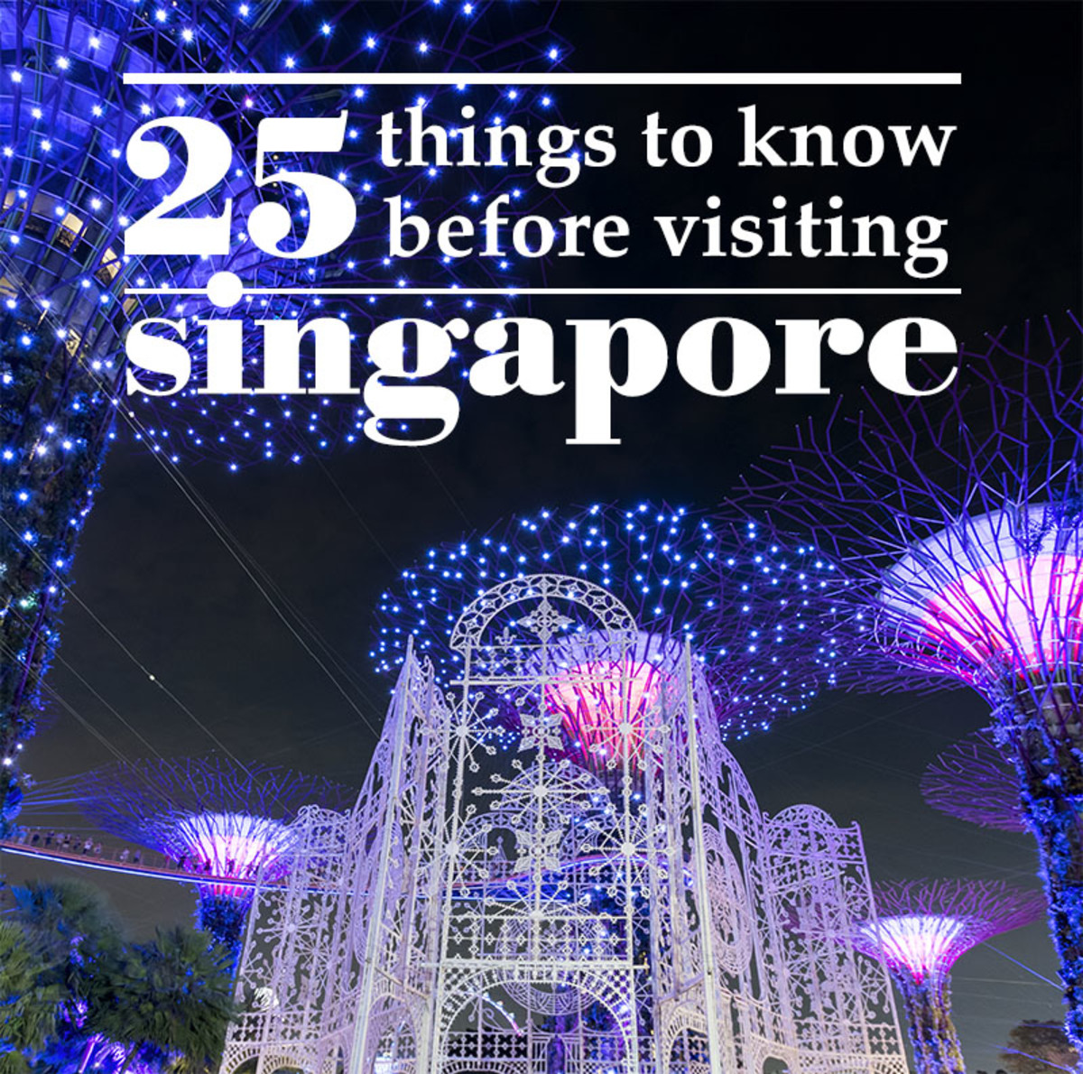 25 Things to Know Before Visiting Singapore
