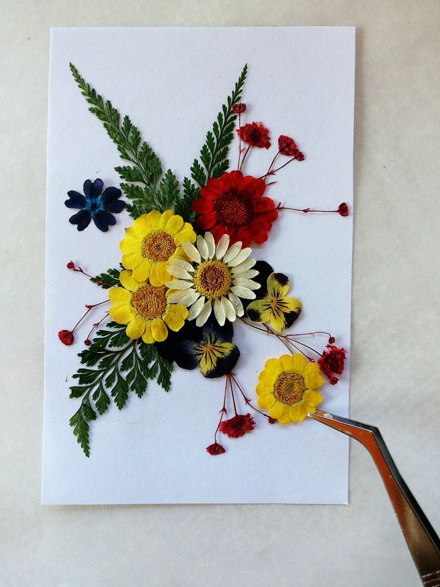 Pressed flowers make beautiful decorations.