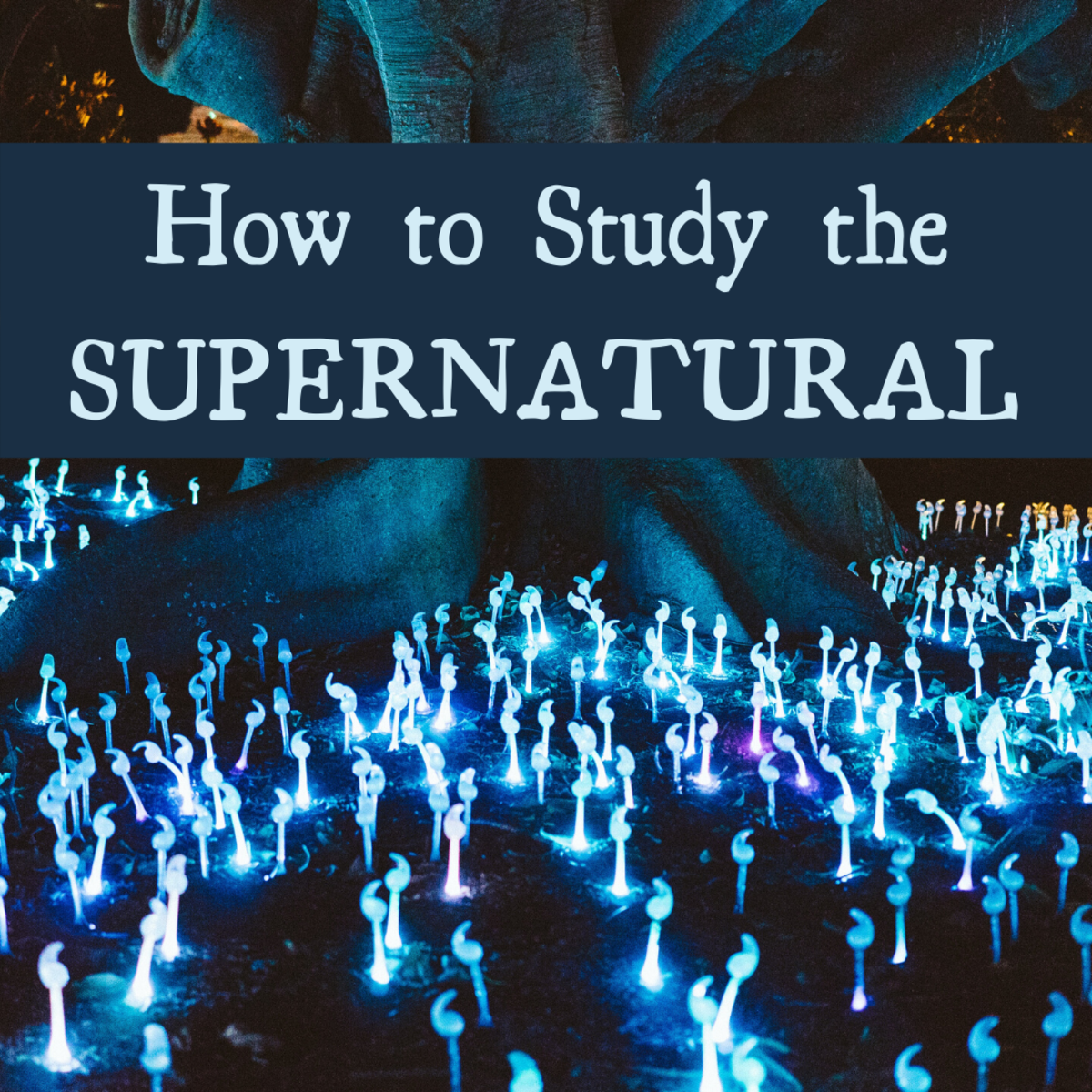 Your Guide to Studying the Supernatural