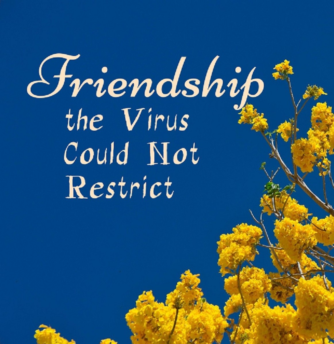 Friendship the Virus Could Not Restrict