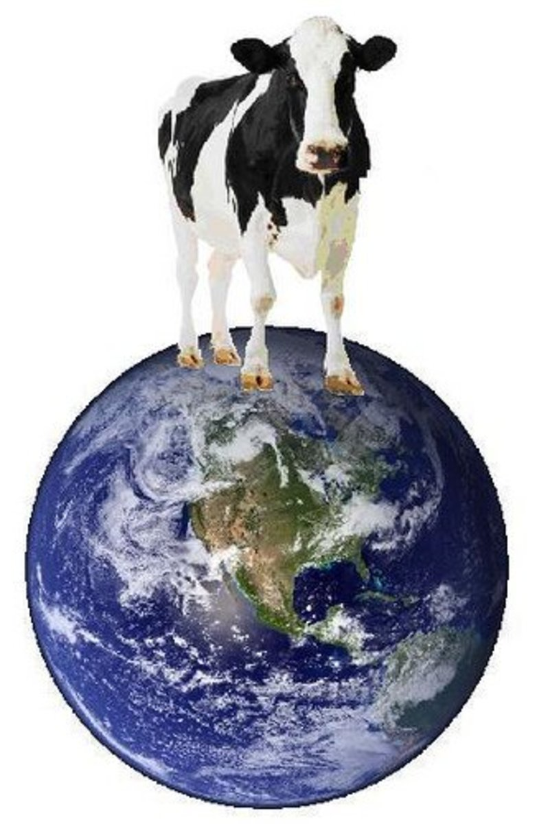 Meat, Methane, and Global Warming