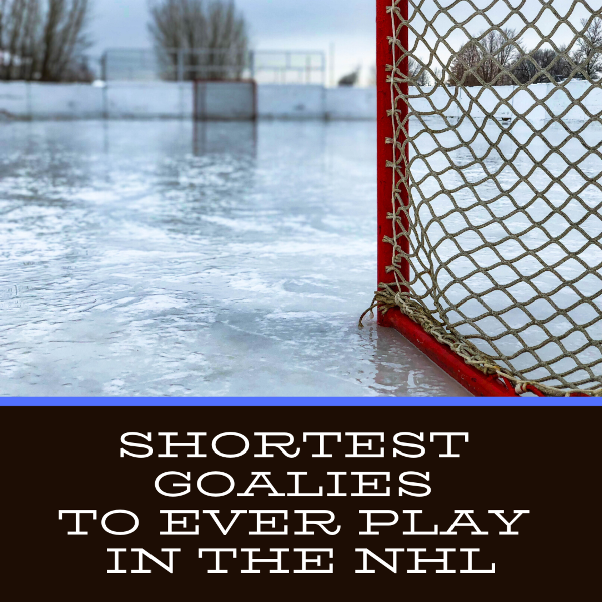 14 Shortest Goalies to Ever Play in the NHL
