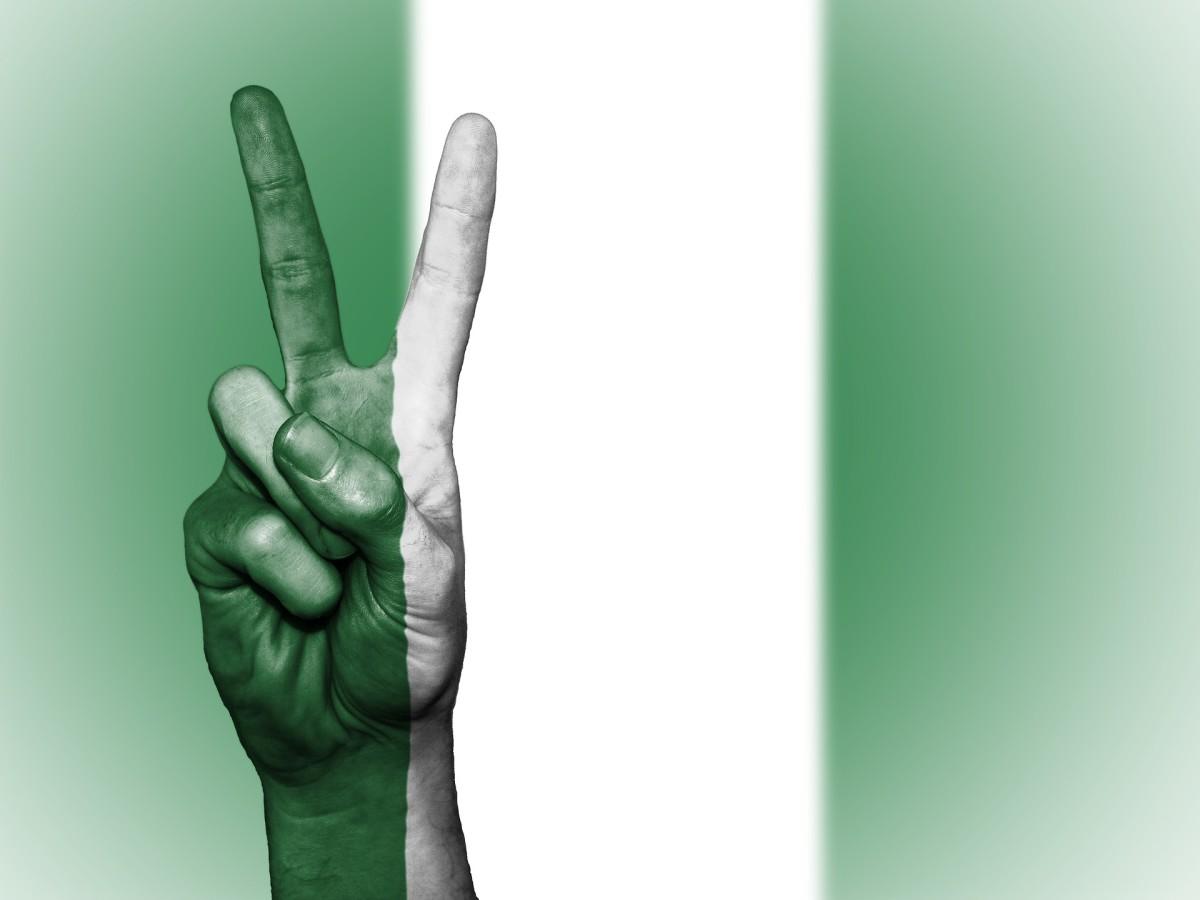 The New Nigeria