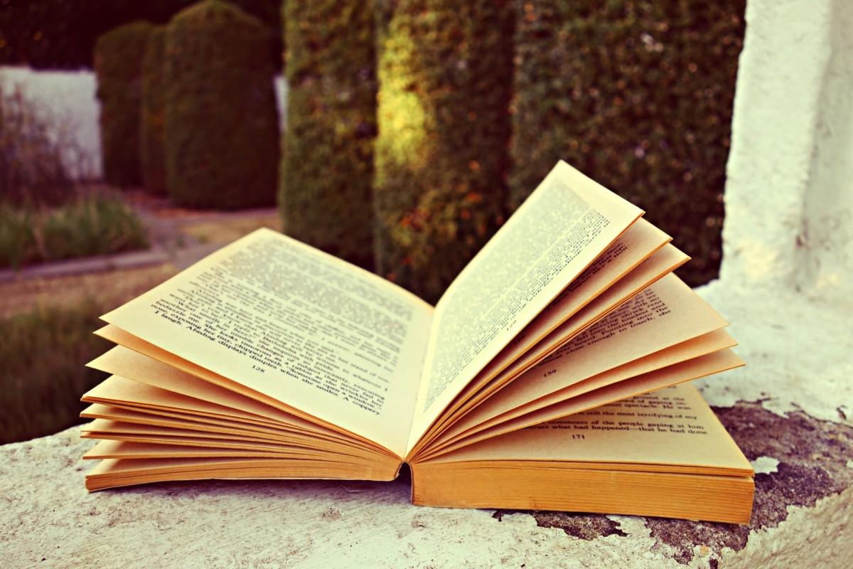 Novels Inspired by Dreams