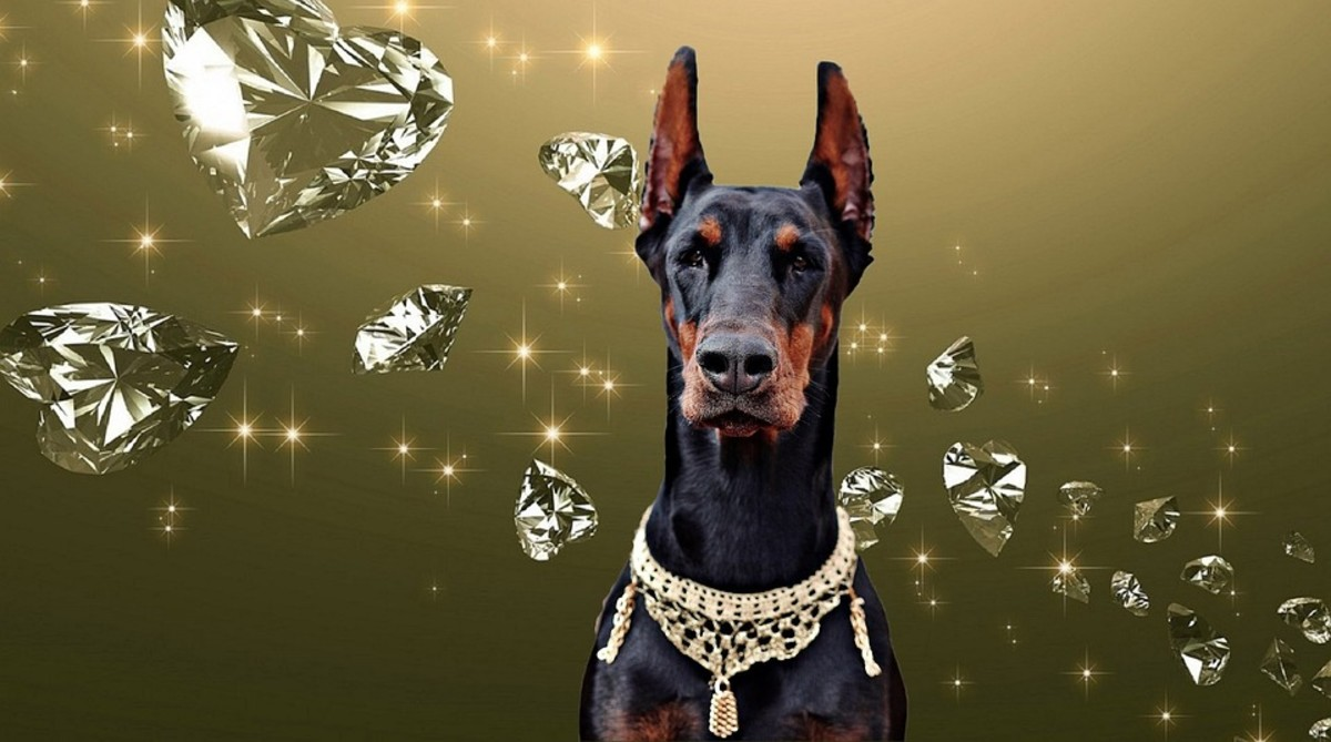 Dog Inheritance