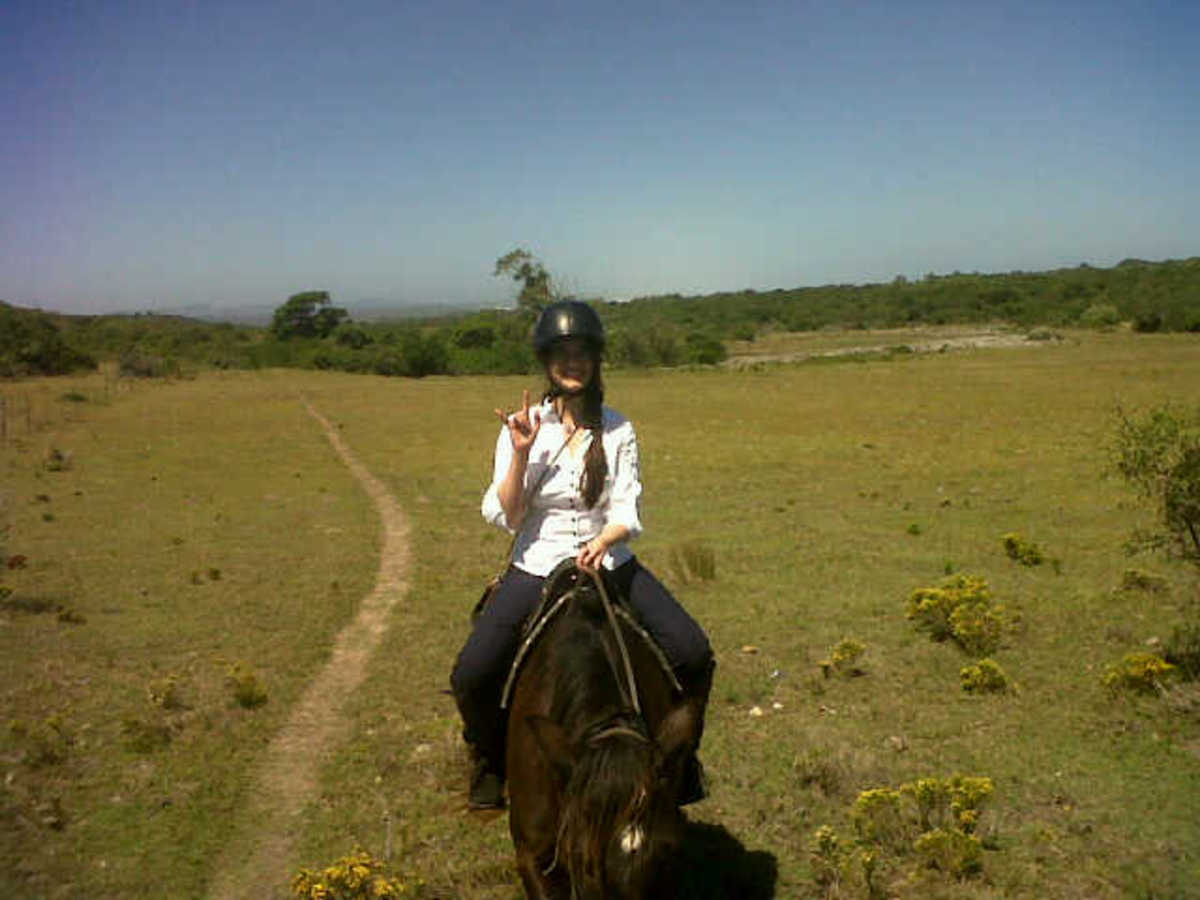 Thin me on a horse. Here I am, happily pretending that I'm not getting motion sickness at all.