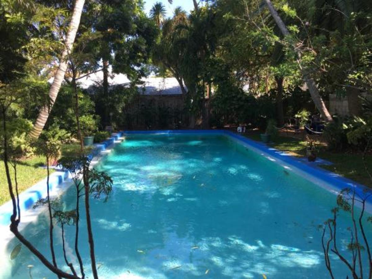 The Serenity of Beauty. A Soulful Offering to Li-Jen Hew. Saturday's Inspirations 3 (Kenya's Delight 2)