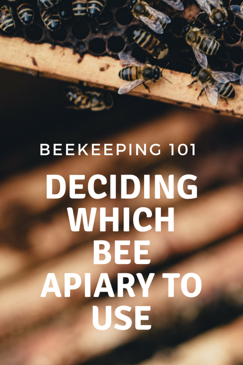 Beekeeping and Different Bee Apiaries Explained