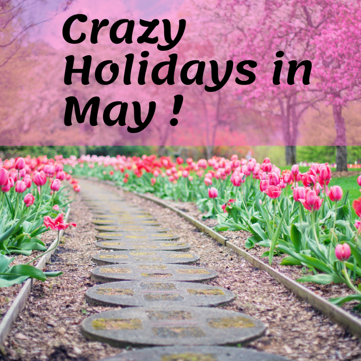 These fun May Holidays are great for the whole family!