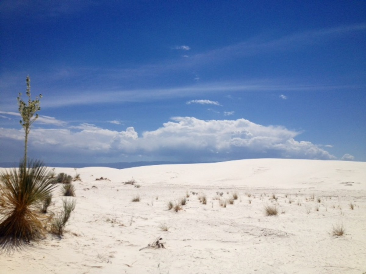 White Sands National Monument on our family vacation a while back.