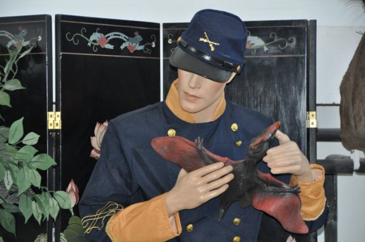 A Civil War Soldier cradles a baby pterodactyl at the International Cryptozoology Museum.