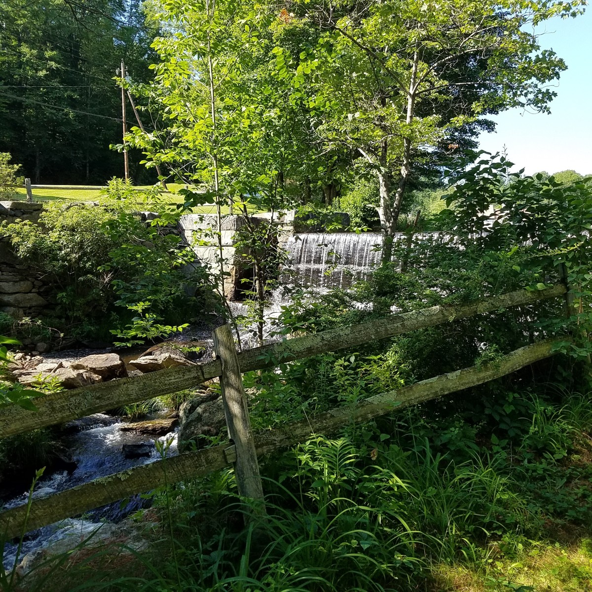 Waterfall at the entrance to the Rowe Camp and Conference Center in the Berkshires (MA)   A healthy dose of greens to eat and spending time in nature are both good for body and soul!