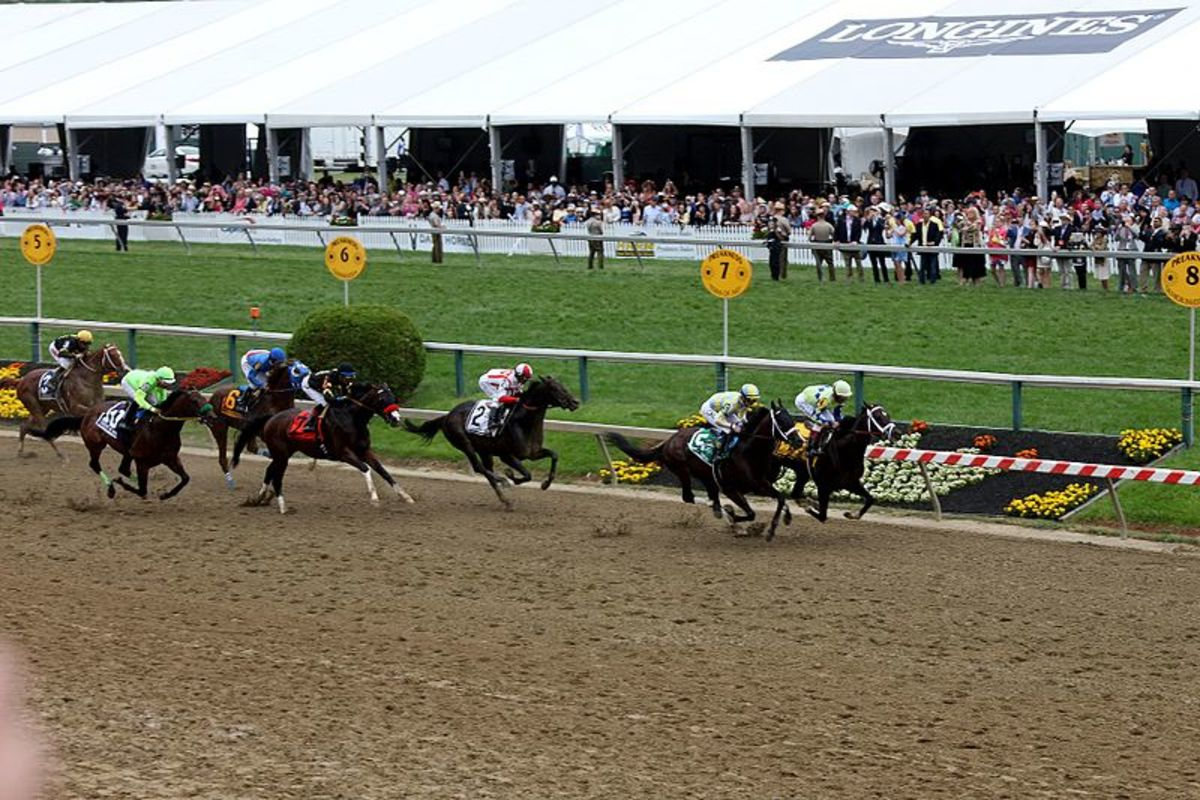 The Preakness Stakes is the second leg of the prestigious Triple Crown races.