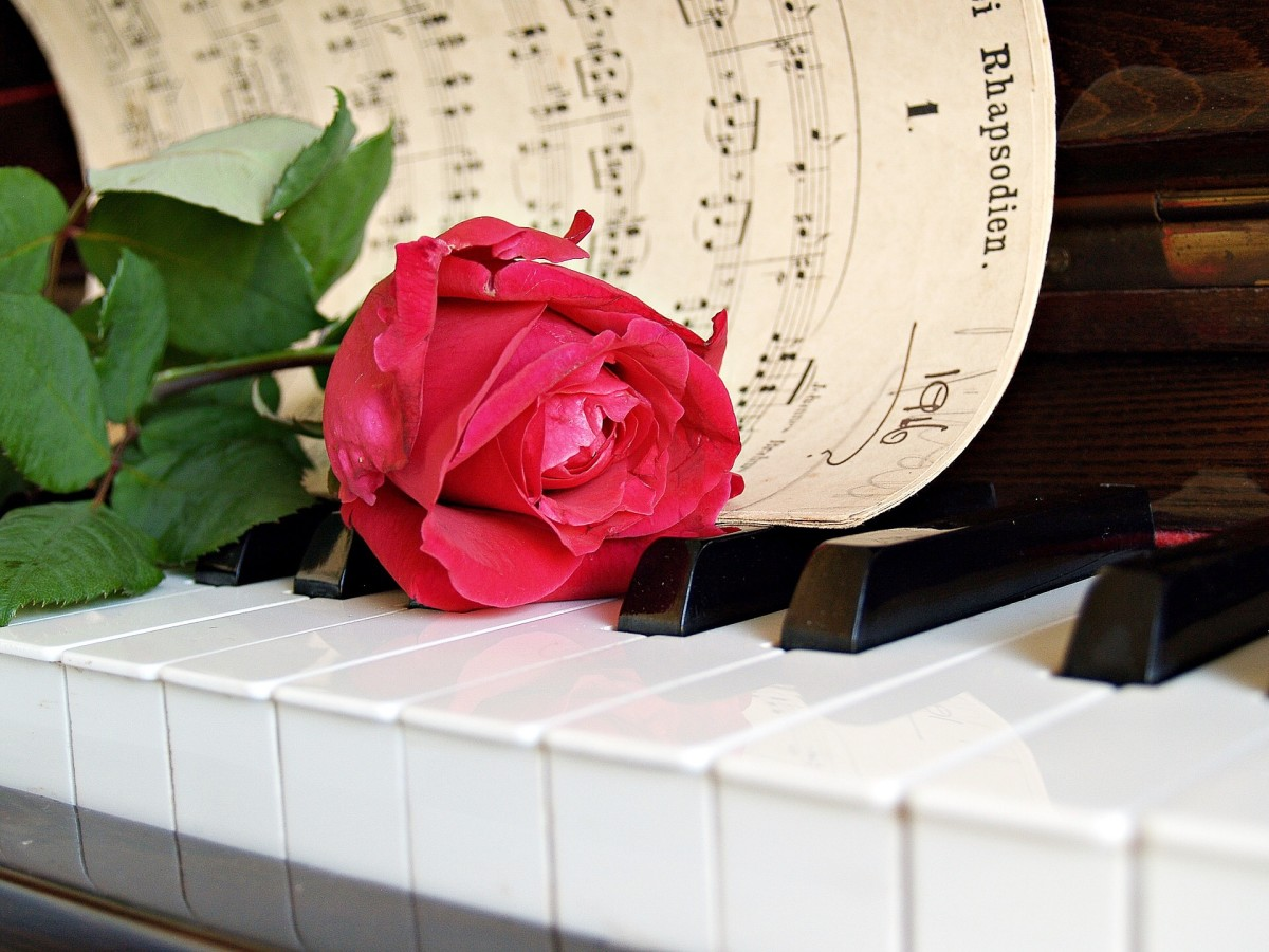A red rose and music can express appreciation for and to a mother.