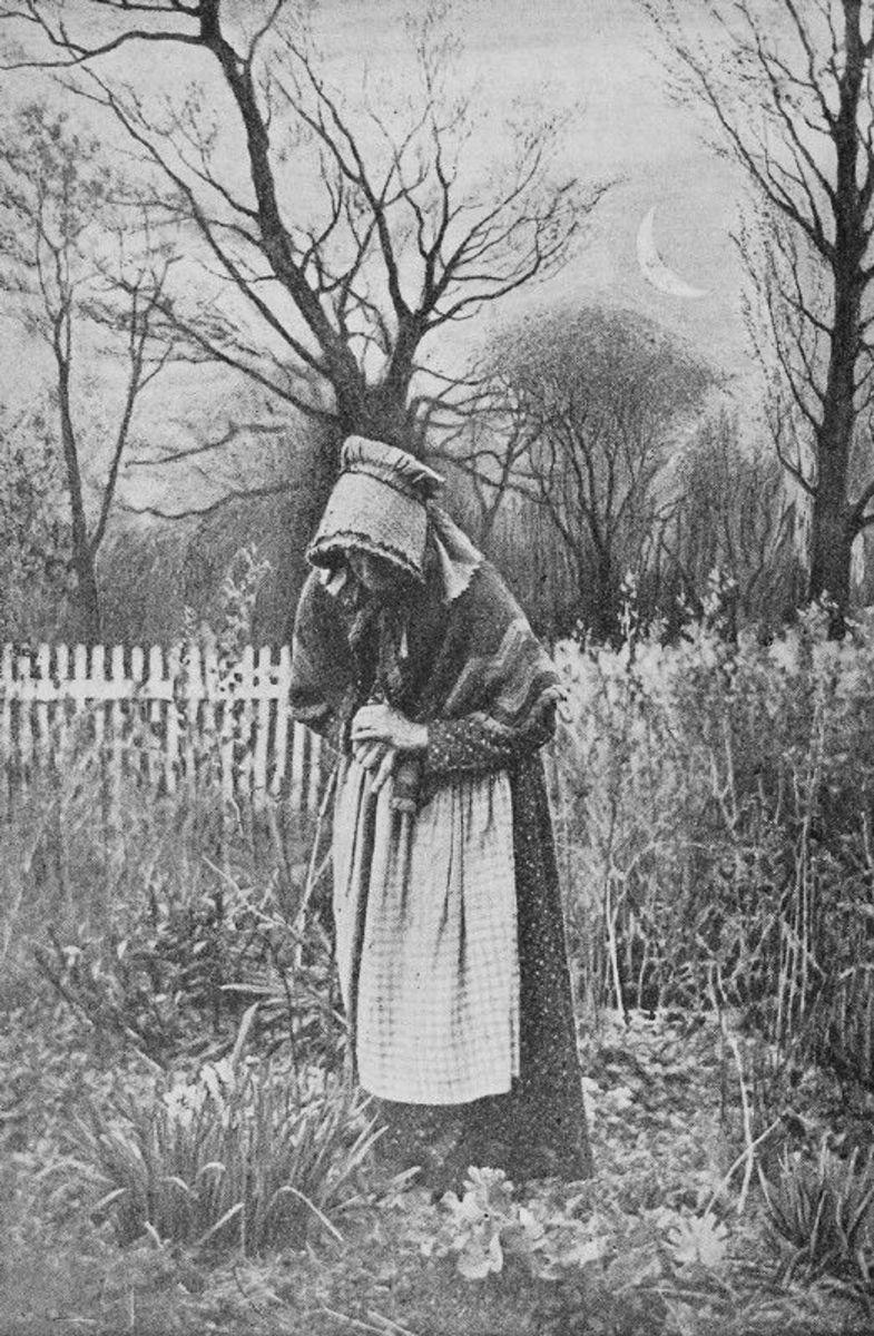 Gothic Amish
