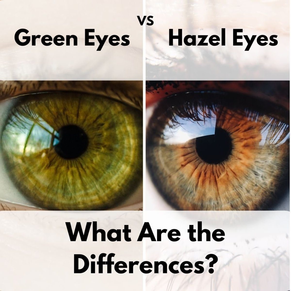 The Difference Between Green and Hazel Eyes
