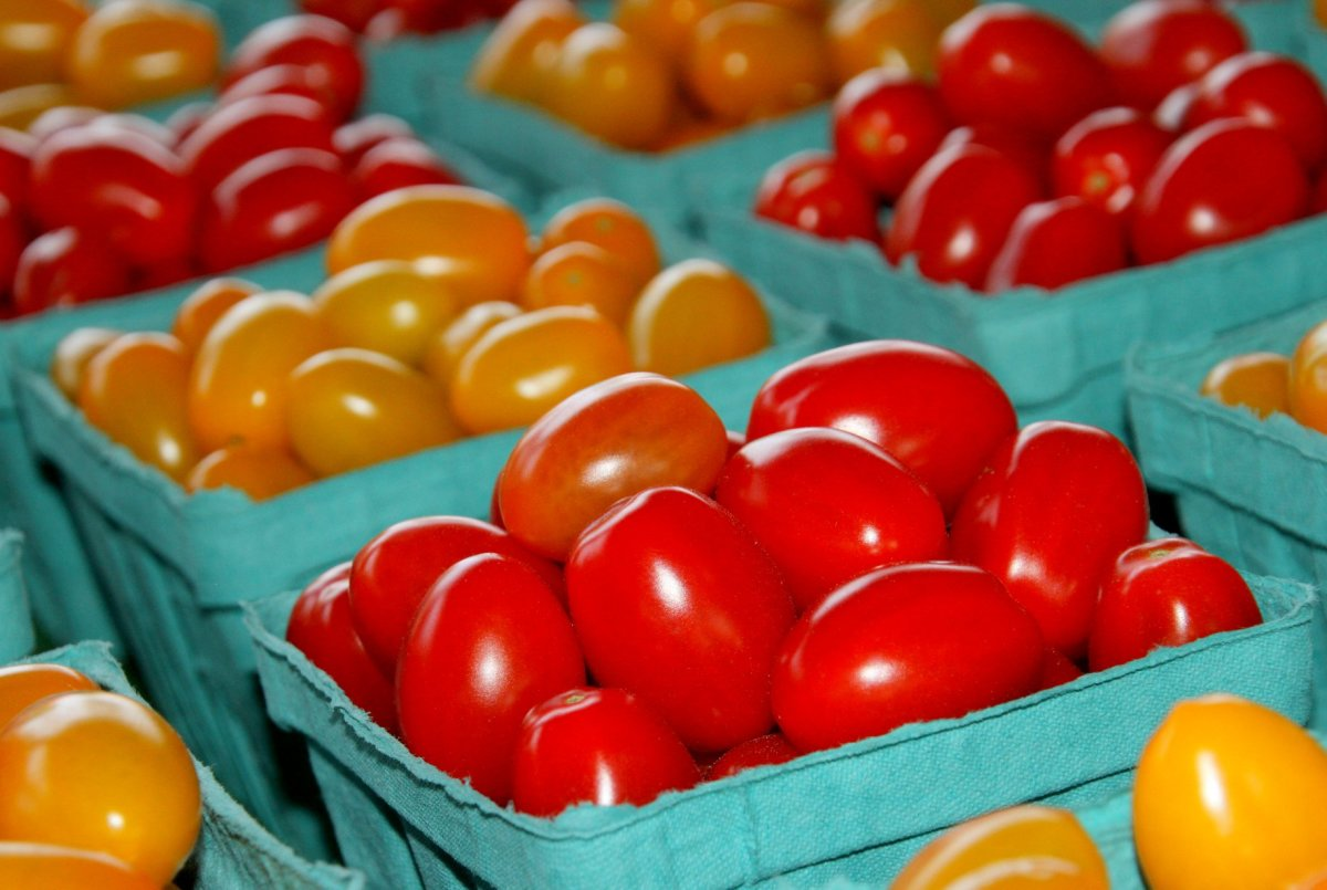 Tomatoes come in a variety of sizes and colors.