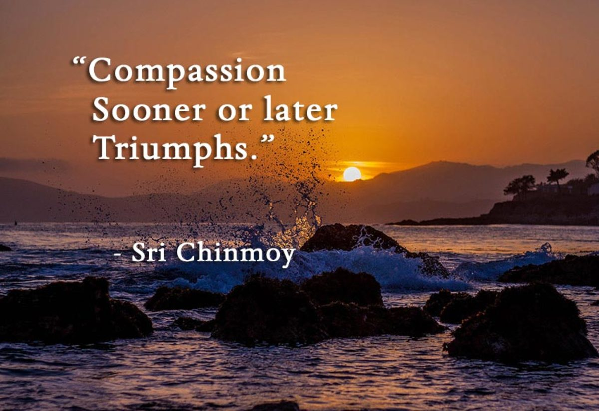 the-quality-of-karuna-mercy-or-compassion