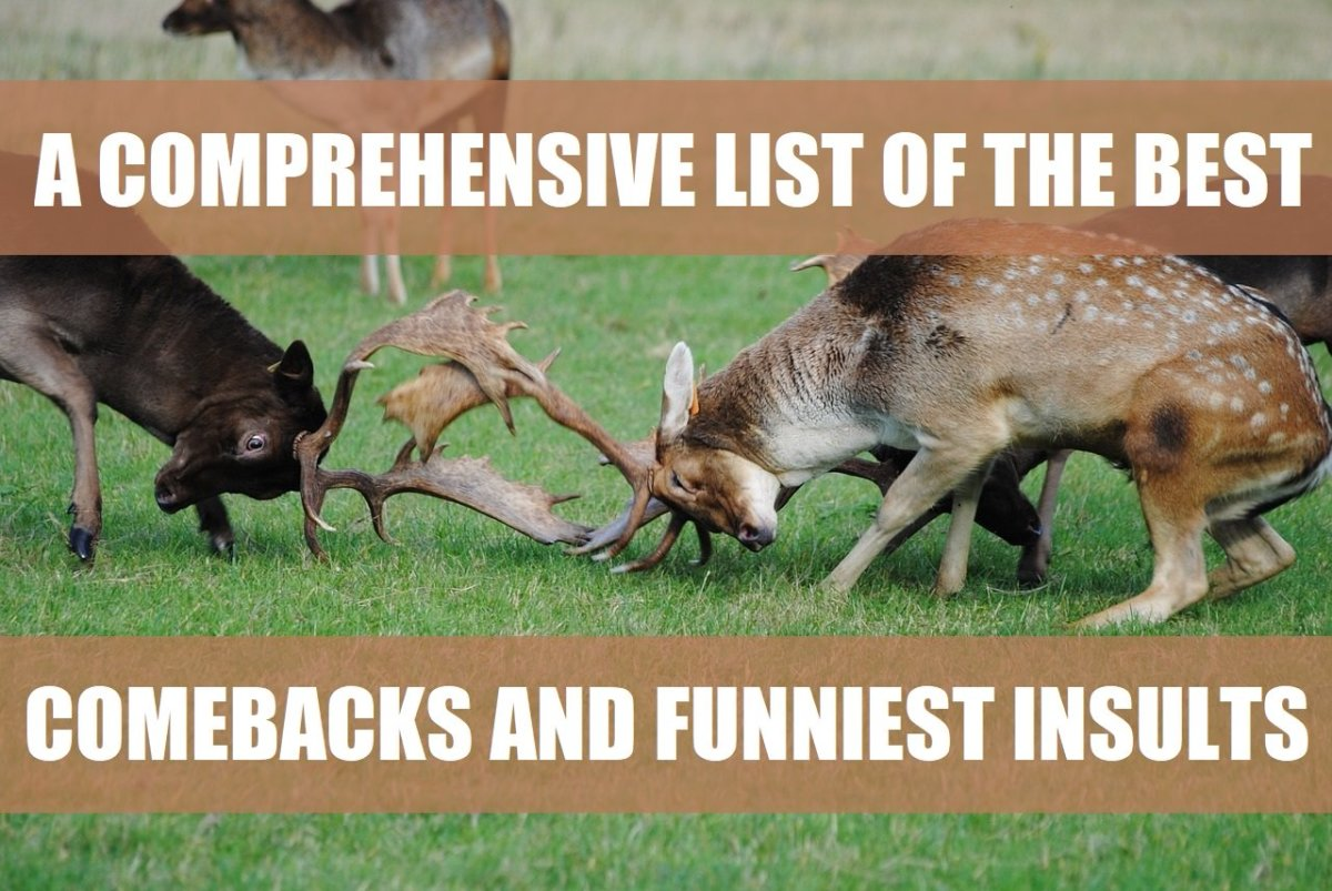 A Comprehensive List of the Best Comebacks and Funniest Insults