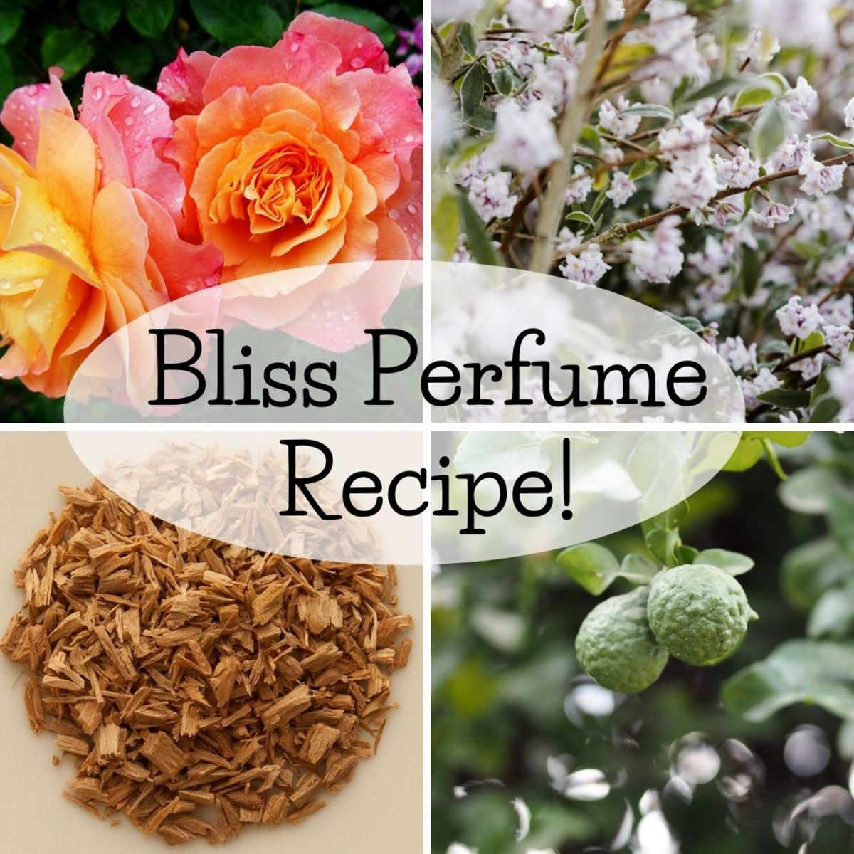Combine the following essential oils with their corresponding formula: 1 drop each of rose and jasmine; 2 drops each of sandalwood and bergamot