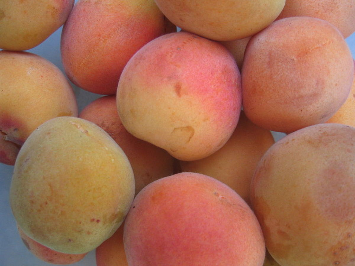 Peaches and apricots are a natural source of acetylsalicylic acid.
