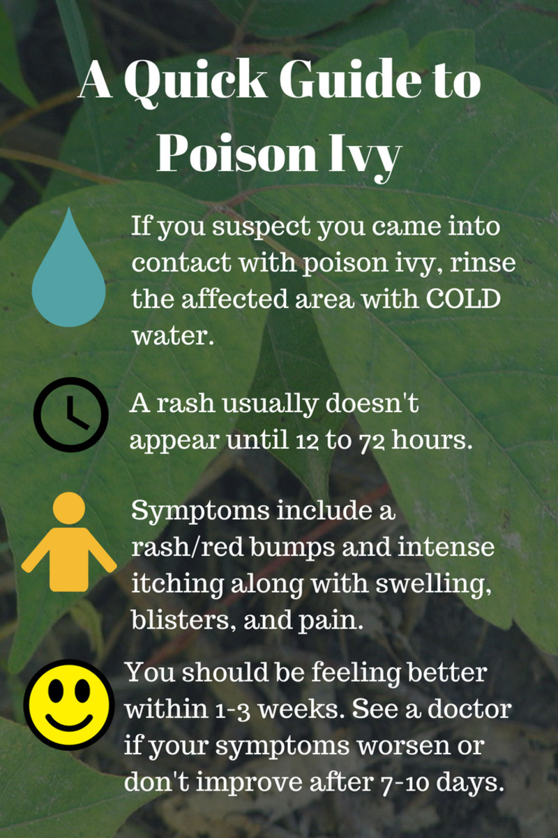 Here's a handy guide to help you quickly recognize the signs and symptoms of poison ivy.