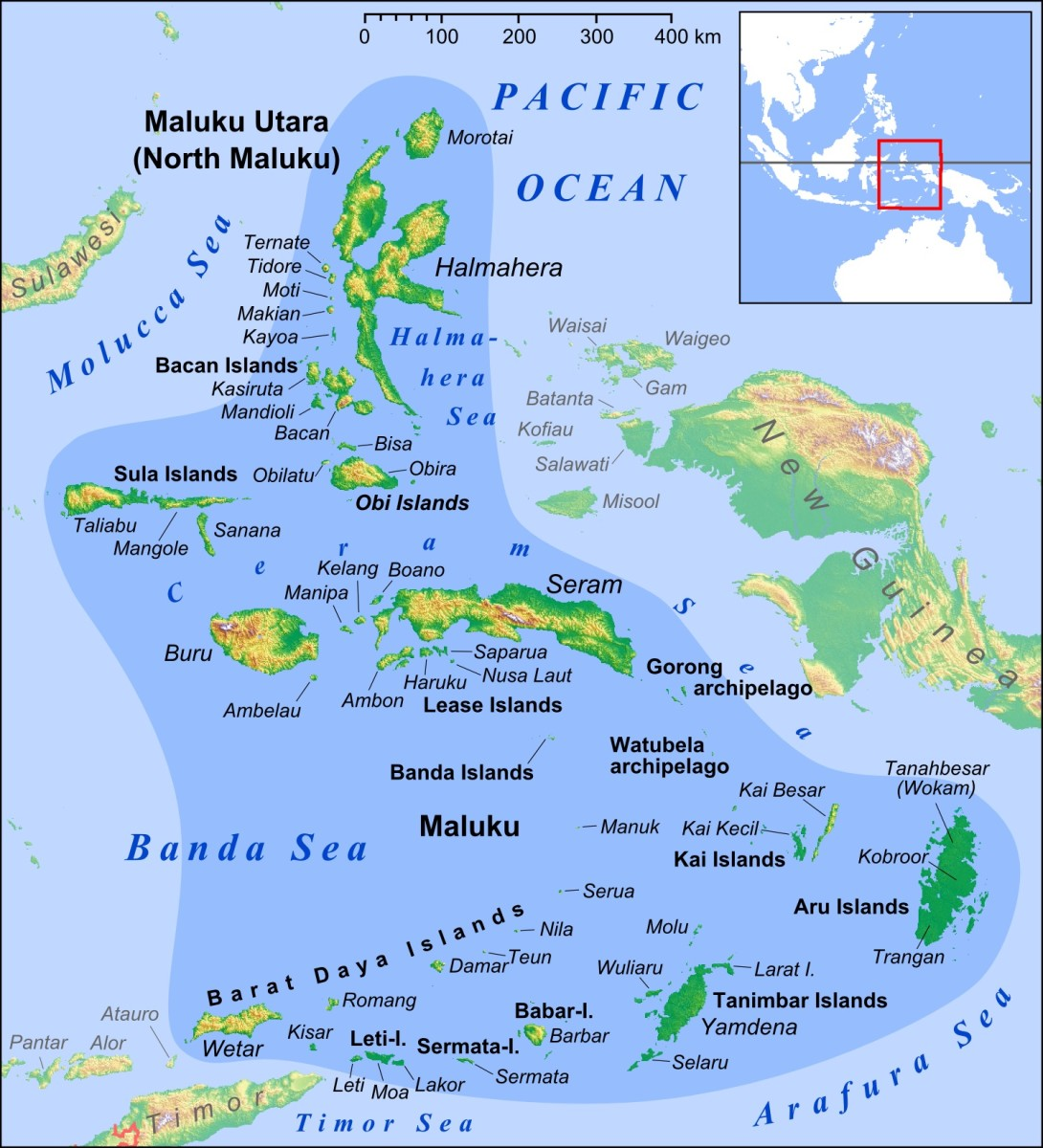 The clove tree is native to the Maluku Islands in Indonesia.