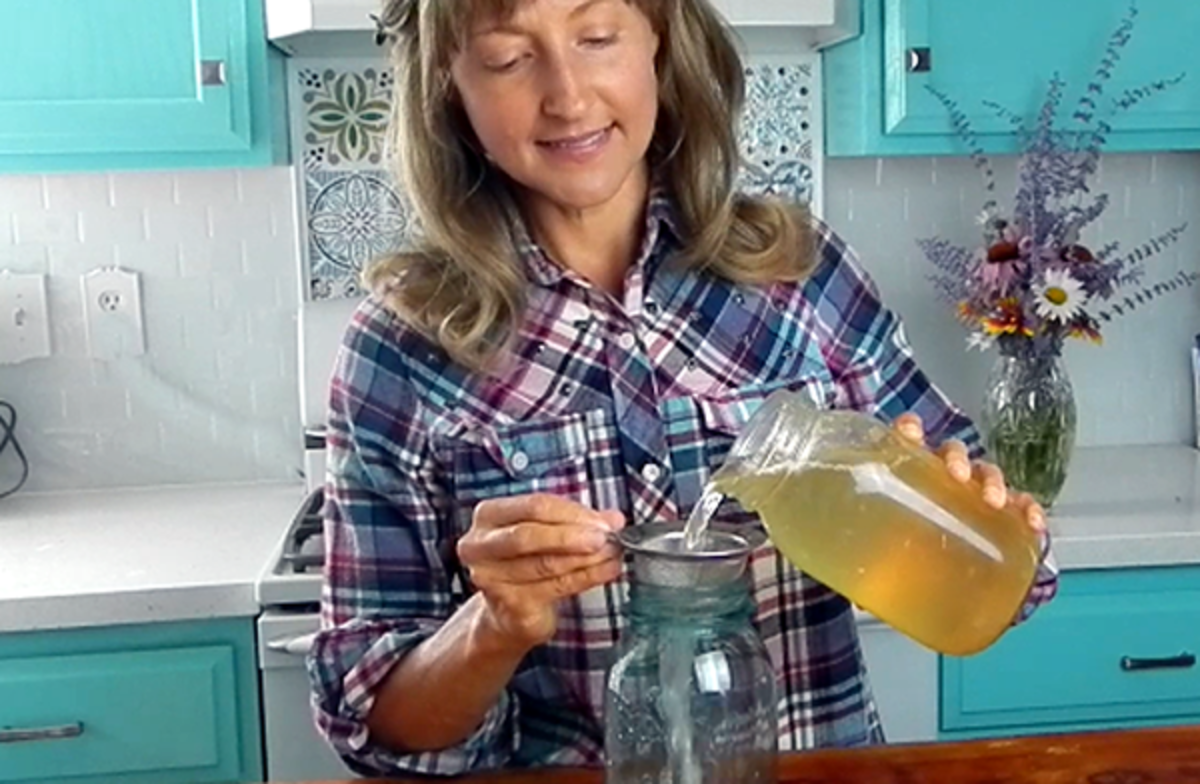 how-to-make-probiotic-water-at-home-without-kefir