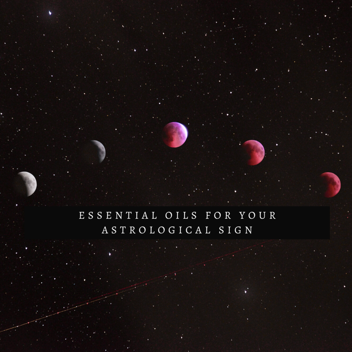 Essential Oils for Your Zodiac Sign