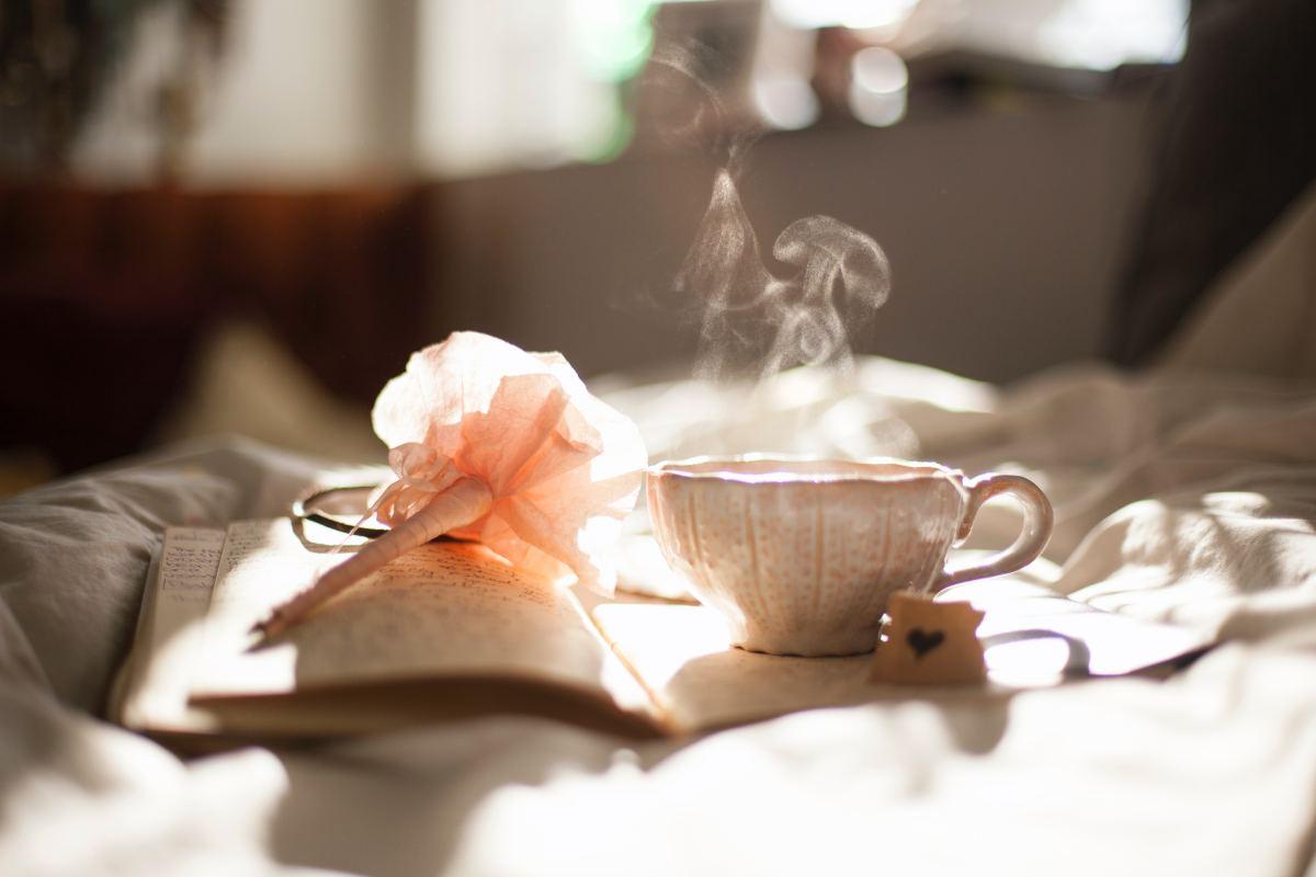 Rosehip tea offers vitamins C, A, B1, B2, B3, K.