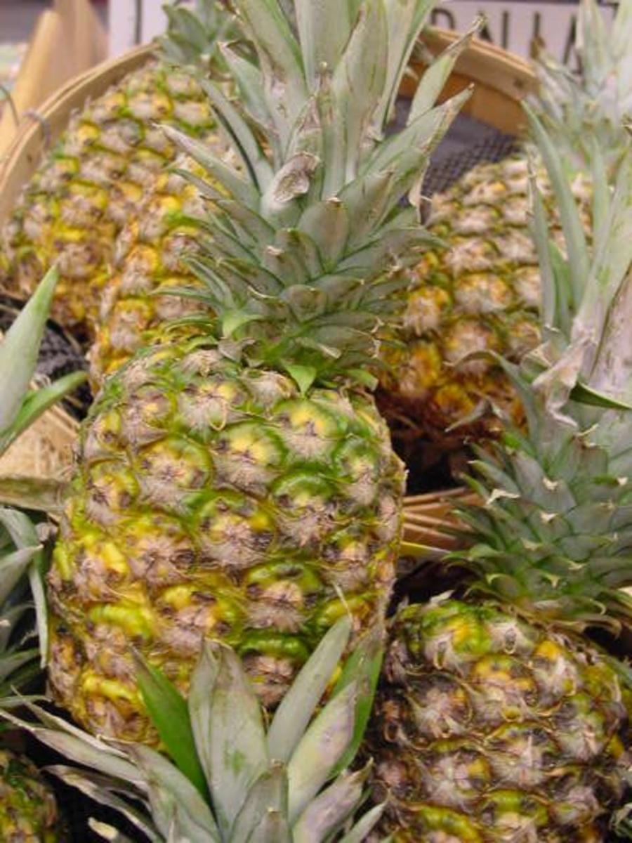 Pineapple is rich in bromelaine