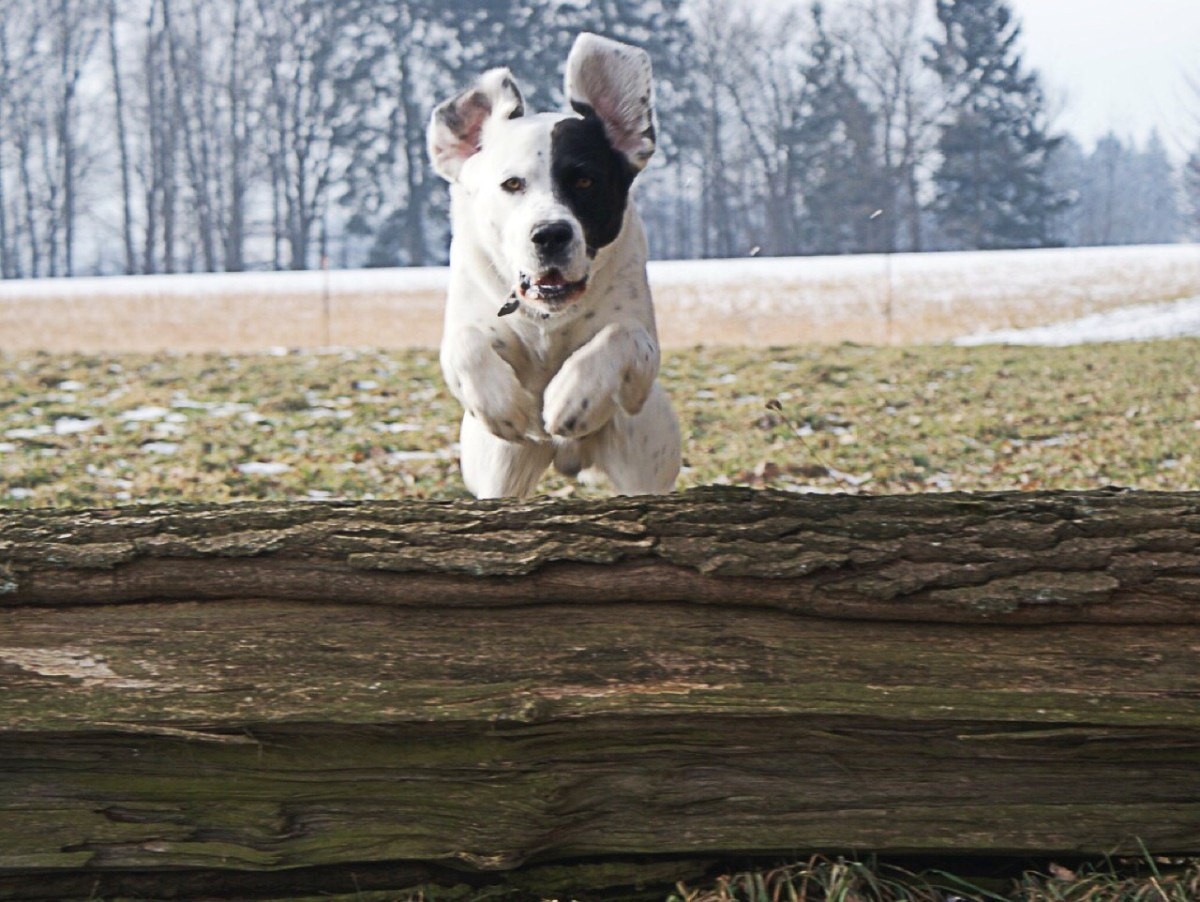Positivity may help us leap over obstacles.