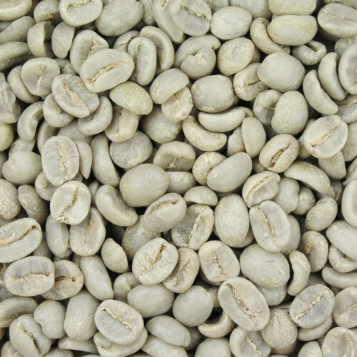 Green coffee beans seem to fight bacteria, but most of the relevant research has been done with roasted coffee.