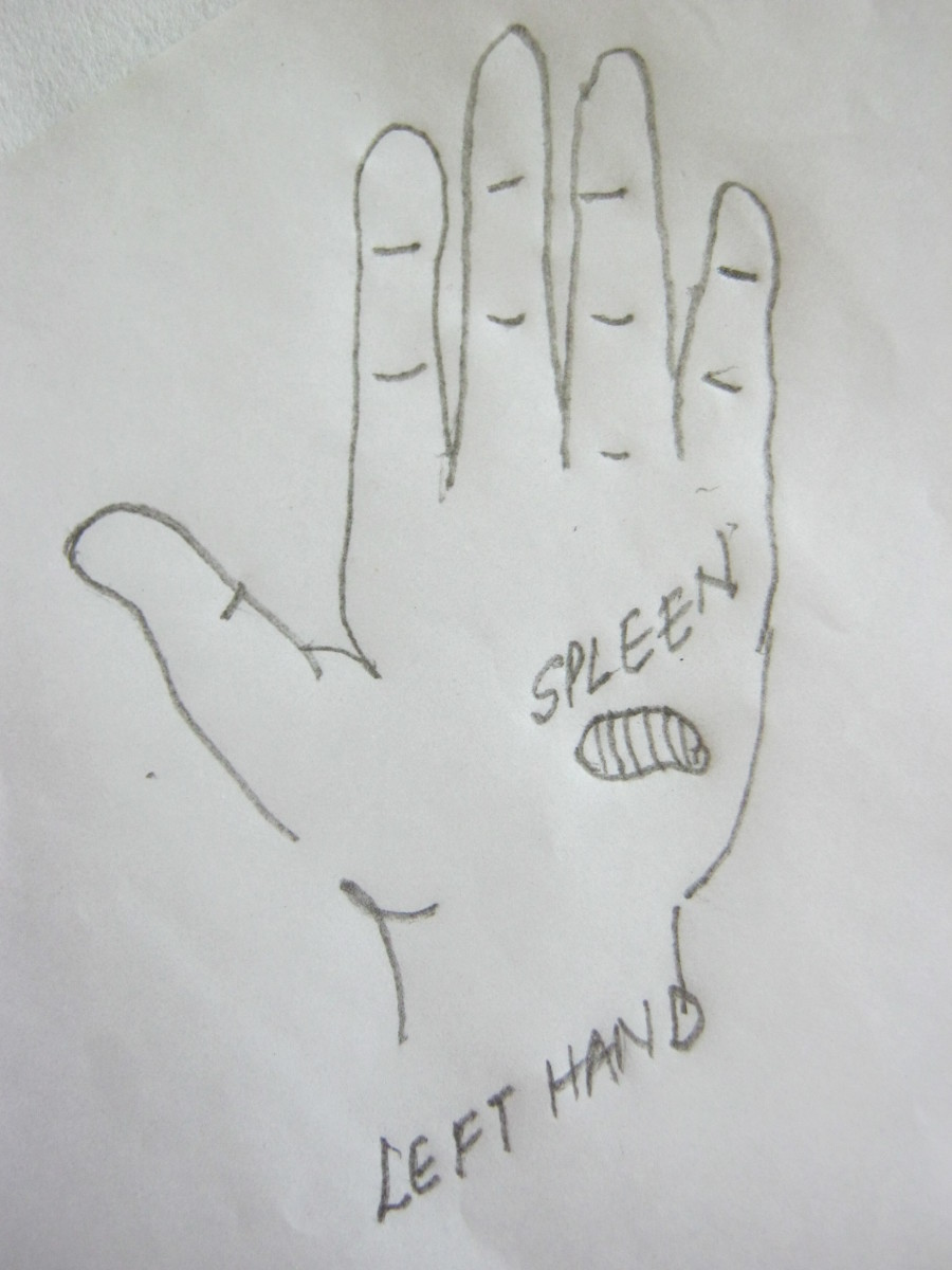 figure 11 B, pressure point for spleen in left hand only