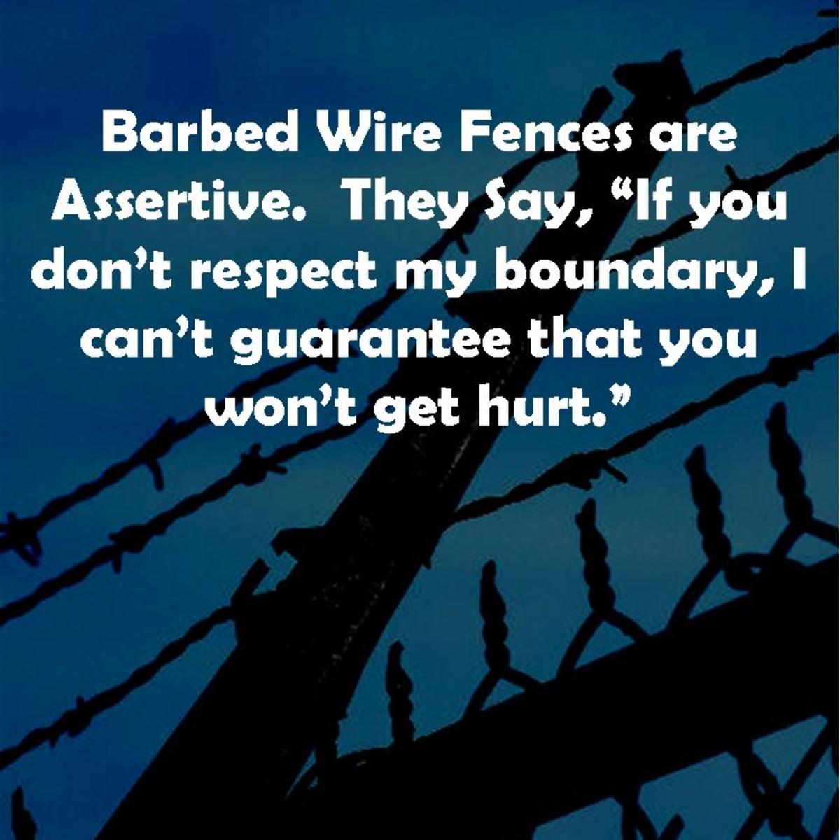 Be a barbed wire fence.  Set a boundary that makes people think twice about trying to surmount it without hurting, but give them a chance respect the boundary.