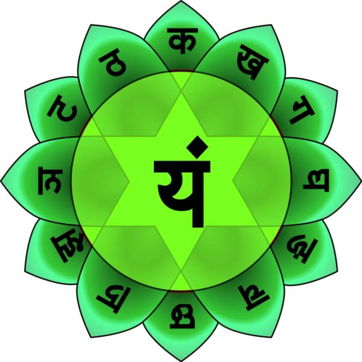 The symbol for the heart chakra, or Anahata.