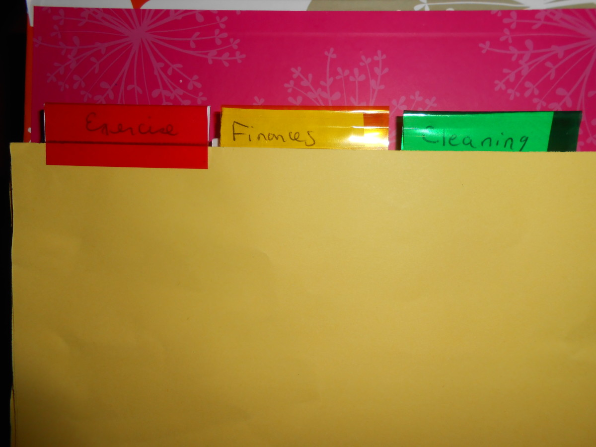 My life binder includes categories like exercise, finances and cleaning.