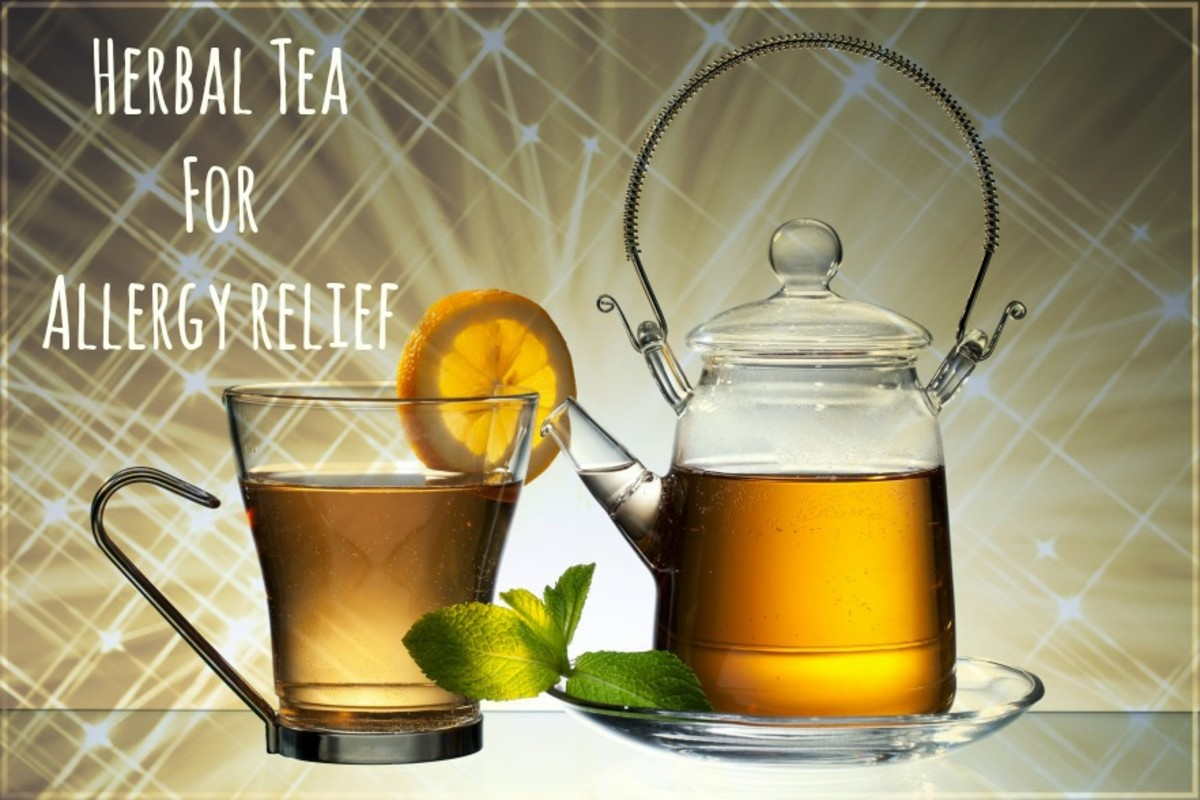 Best Herbal Teas for Allergies and Allergy Relief