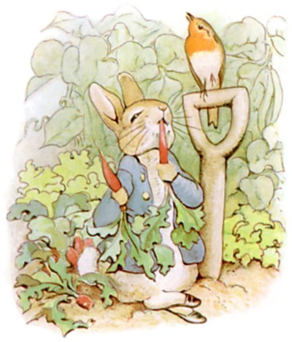 "Original illustration for ""The Tale of Peter Rabbit"" by Beatrix Potter. This was her first book, and its popularity encouraged Potter to go on to write more; she became very wealthy."