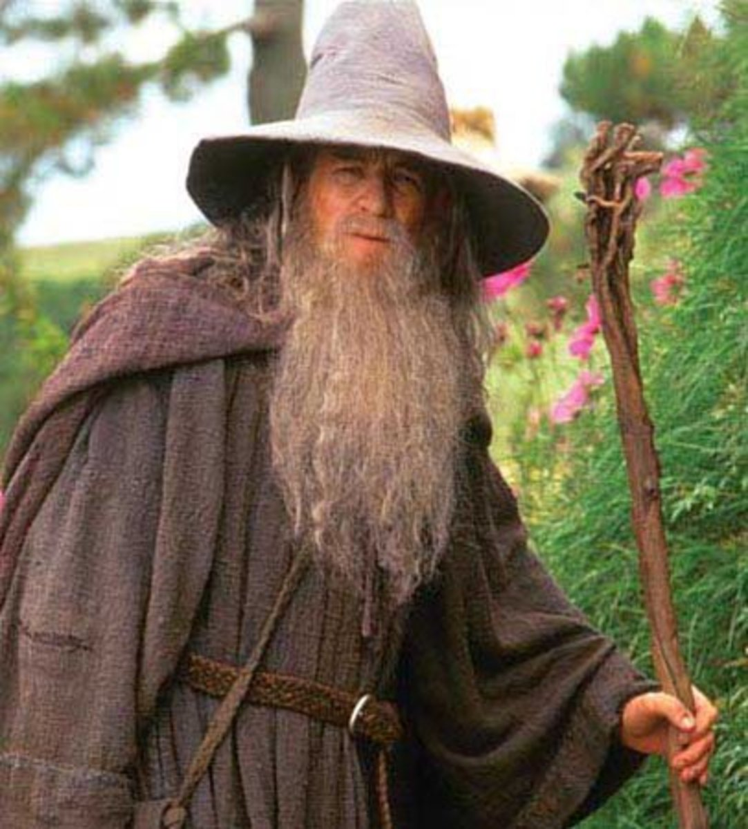 Gandalf the Grey surveys the village of Hobbiton in the Shire.