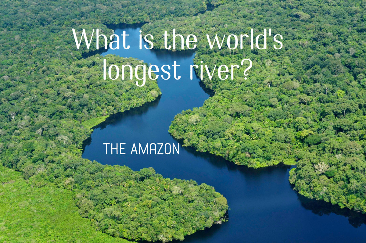 Fun Trivia And Quiz Questions With Answers HobbyLark - Top five longest rivers in the world
