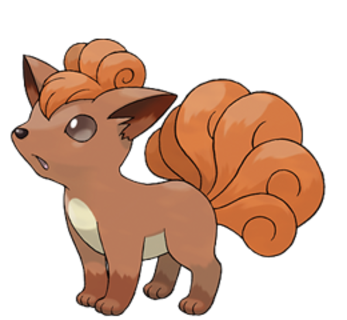 This Little Fox Pokemon Is Very Cute And Was Under The Care Of Brock For A While It Has Some Fur On Top Its Head Thick Tail