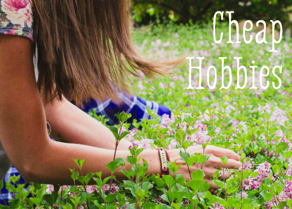 how-to-choose-a-hobby