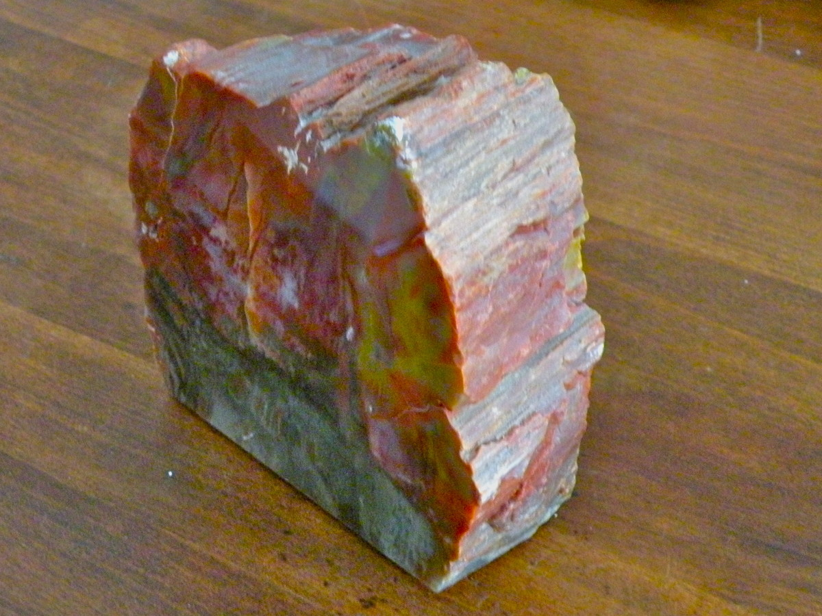 Paperweight made from polished petrified wood. Purchased at Petrified Forest National Park.