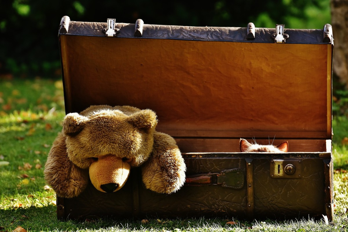 """I'm going on a trip to France, and I'm going to pack . . . a cat . . . and . . . a teddy bear . . ."""